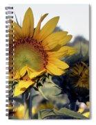 Morning Prayer Spiral Notebook