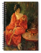 Morning Reflections 1910 Spiral Notebook