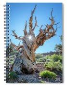 Morning Salutation Spiral Notebook