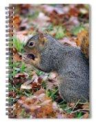 Morning Snack Spiral Notebook