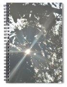 Morning Star 16-01 Spiral Notebook