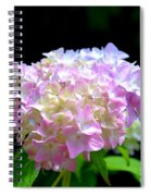 Morning Whisper - Hydrangea Spiral Notebook