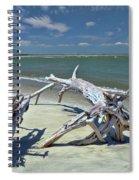 Morris Island Driftwood Spiral Notebook