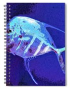 Morton Spiral Notebook