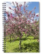 Moscow, Pink Cherries In Kolomenskoye Park Spiral Notebook