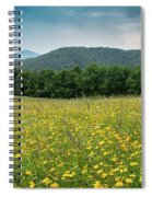 Moses Cone Meadow Spiral Notebook