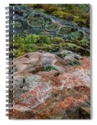 Moss And Lichen Abstract Spiral Notebook