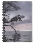 Moss Beach Spiral Notebook