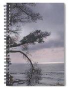 Moss Beach Spiral Notebook