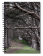 Moss Beach Trees 4191 Spiral Notebook