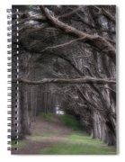 Moss Beach Trees 4191 Spiral Notebook