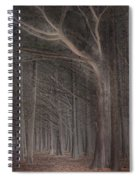 Moss Beach Trees Spiral Notebook