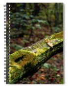Moss Covered Fence Spiral Notebook