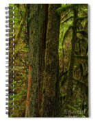 Moss Covered Giant Spiral Notebook
