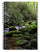 Moss Covered River Rocks Spiral Notebook