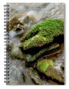 Moss Covered Rock Spiral Notebook