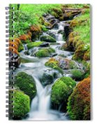 Moss Covered Stream Spiral Notebook