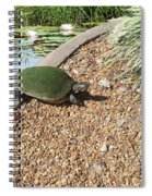 Moss Covered Turtle Spiral Notebook