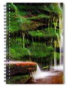 Moss Falls - 2981-2 Spiral Notebook