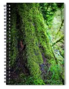 Moss On Tree Spiral Notebook