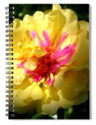 Moss Rose Spiral Notebook