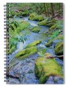 Mossy Blue Brook Spiral Notebook