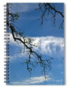 Mossy Branches Skyscape Spiral Notebook