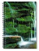 Mossy Falls - 2981 Spiral Notebook