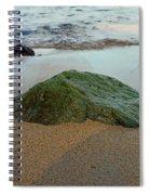 Mossy Rock Spiral Notebook