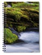 Mossy Rocks Oregon 3 Spiral Notebook