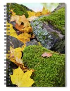 Mossy Stones And Maple Leaves Spiral Notebook
