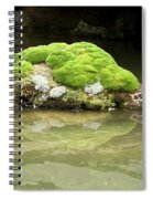 Mossy Turtle Rock Spiral Notebook