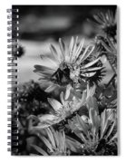 Moth And Flowers Spiral Notebook