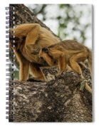Mother And Baby Black Howler Monkeys Climbing Spiral Notebook