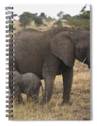 Mother And Baby Elephant Spiral Notebook