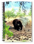 Mother Bear Spiral Notebook
