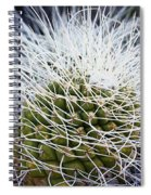 Mother Of Thousands Spiral Notebook