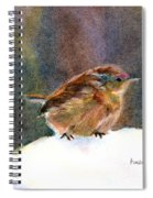 Mother Wren Spiral Notebook