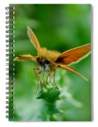 Mothera Spiral Notebook