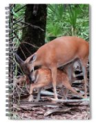Mother's Care Spiral Notebook