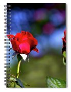 Mother's Day Roses Blank Spiral Notebook