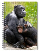 Mothers Hug Spiral Notebook
