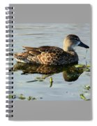 Mottled Duck Spiral Notebook