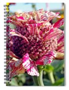 Mottled Pink Cone Flower Spiral Notebook