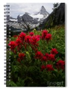 Mount Assiniboine Canada 11 Spiral Notebook