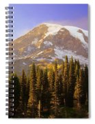 Mount Raineer 2 Spiral Notebook
