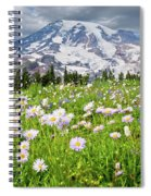 Mount Rainier And A Meadow Of Aster Spiral Notebook