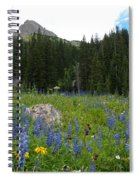 Mount Sneffels Lupine Landscape Spiral Notebook