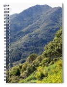Mount Tamalpais From Blithedale Ridge Spiral Notebook