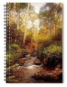 Mountain Creek Spiral Notebook